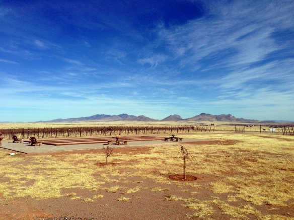 God I love these wide open spaces of Arizona.  This is from Lightning Ridge Cellars.